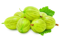 Heap of fresh ripe gooseberry berries with leaves. Royalty Free Stock Images