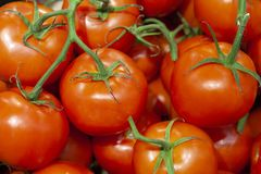 Heap of fresh ripe red tomatoes without branches close up. stock image