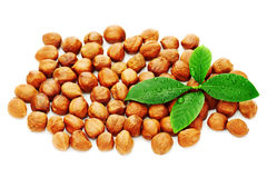 Heap of fresh shelled hazelnuts with green leaves isolated on wh Stock Photo