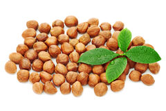 Heap of fresh shelled hazelnuts with green leaves isolated Royalty Free Stock Images