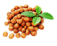 Heap of fresh shelled hazelnuts with green leaves isolated Royalty Free Stock Photography