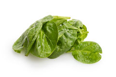 Heap of fresh spinach leaves. Isolated on white Royalty Free Stock Photography