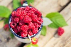 Heap of fresh sweet raspberries cup vitamin fruit Stock Photo