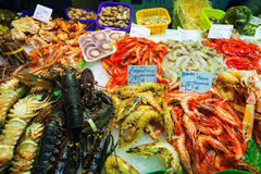 Heap of fresh uncooked seafood Royalty Free Stock Image