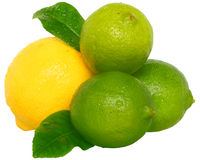 Heap fresh wet lime and lemon with leaves Royalty Free Stock Image
