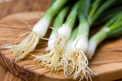 Heap of fresh young onion on the wooden background Stock Images