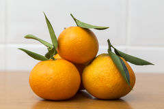Heap of freshly picked tangerines Royalty Free Stock Image