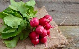 Heap of a garden radish Stock Images