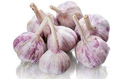 Heap garlic head Royalty Free Stock Photo