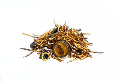 Heap of gold radio components. And detail royalty free stock images