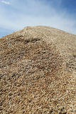 Heap of grains of oats against the blue sky Royalty Free Stock Photos