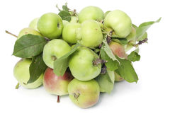 Heap of green apples Stock Photos