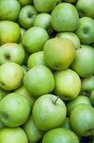 A heap of green apples Stock Images