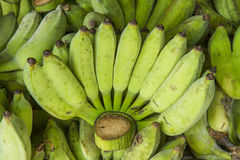 Heap of green bananas Royalty Free Stock Photography