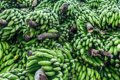 Heap of green bananas from a market Stock Images
