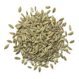 Heap of green fennel seeds Royalty Free Stock Photos