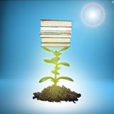 Heap of ground with plant and books Stock Photography