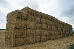 Heap of hay bricks Royalty Free Stock Photography