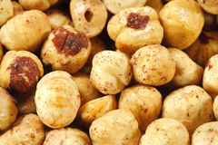 Heap of Hazelnut Stock Photography