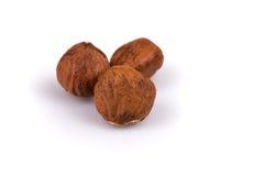 Heap of hazelnuts Royalty Free Stock Photo