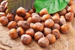 Heap of hazelnuts Royalty Free Stock Image