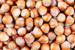 Heap of hazelnuts Royalty Free Stock Image