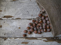 Heap of Hazelnuts on wooden background Royalty Free Stock Photos