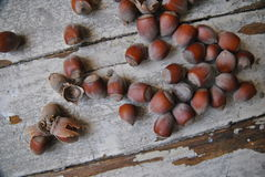 Heap of Hazelnuts on wooden background Royalty Free Stock Photography
