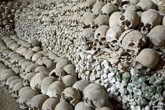 Heap of human bones. Royalty Free Stock Photos
