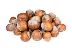 Heap of huzelnuts on white Stock Image