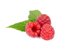 Heap of Juicy Red Ripe Raspberry with Green Leaves. Isolated on White Background Royalty Free Stock Photos