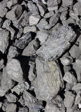 Heap of large and black coal lumps prepared for winter. In sunny day Stock Images