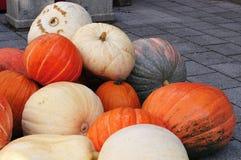 Heap of large garden pumpkins stock photography
