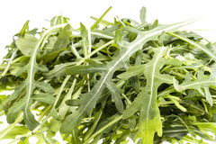 Heap of leaves of arugula on awhite background. Close up royalty free stock images