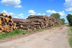 Heap of logs Royalty Free Stock Image