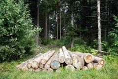 Heap of logs Royalty Free Stock Photos