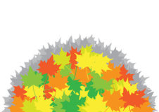 Heap from maple leaves Stock Images