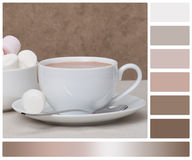 Heap Of Marshmallows In White Bowl. Hot Chocolate Stock Images