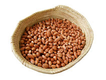 Heap of Moroccan Argan nuts in the basket for the process if extracting Argan oil Stock Photo