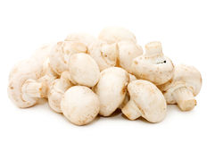 Heap of of mushroom champignon Stock Images