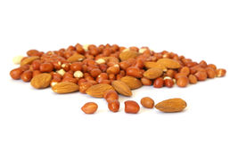 Heap of nuts on white Stock Image
