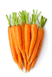 Heap Of Carrots Like A Large Root-crop Stock Photo