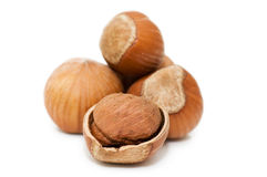 Heap Of Hazelnuts Isolated Over White Royalty Free Stock Images