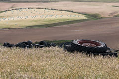 Heap of old tires on the field Stock Images