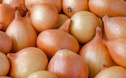 Heap of onions Stock Photo
