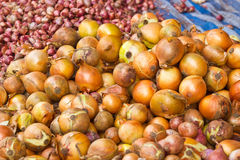 Heap Of Onions Royalty Free Stock Photos