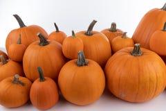 Heap of orange pumpkins royalty free stock photo