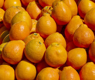 Heap of orange. Royalty Free Stock Photography