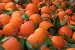 A heap of oranges. In the market stock photography