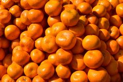 A heap of oranges. Close up shot in direct sunlight royalty free stock image